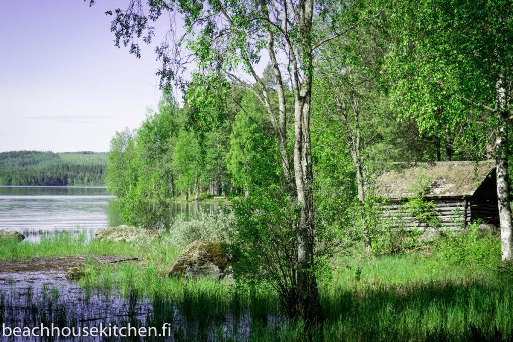 luonto Suomi